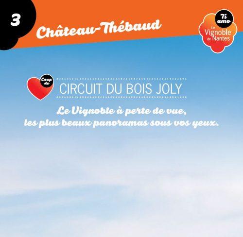 Le Bois Joly in Château-Thébaud circuit card