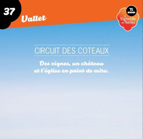 Les Coteaux in Vallet circuit card