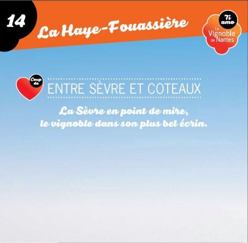 Sèvre et Coteaux in la Haye Fouassière circuit card