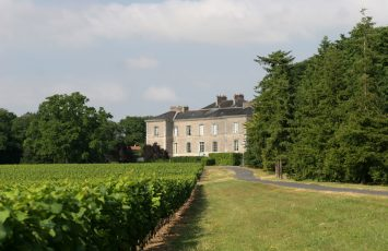 CHATEAU DU CLERAY – SAUVION