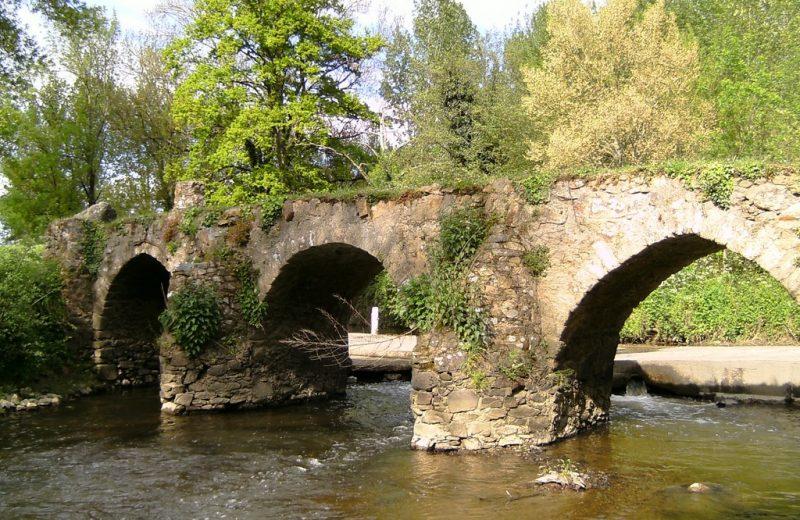 2017-pont-gallo-romain-patrimoine-culturel-levignobledenantes-mouzillon-44