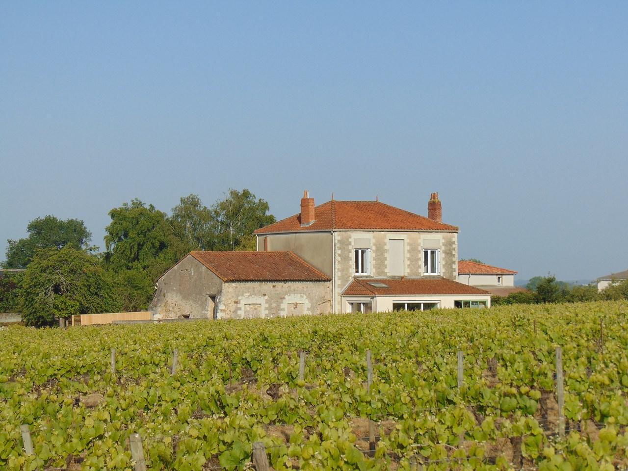 Les Jardins De La Robinière domaine viticole chÂteau de fromenteau à vallet