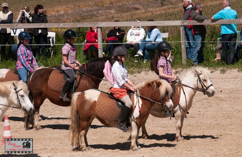 centre-equestre-roseaux-de–goulaine-haute-goulaine-44-LOI-3–