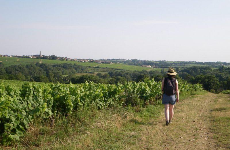 circuit-boucle-sevre-coteaux-la-haye-fouassiere-44-ITI (3)