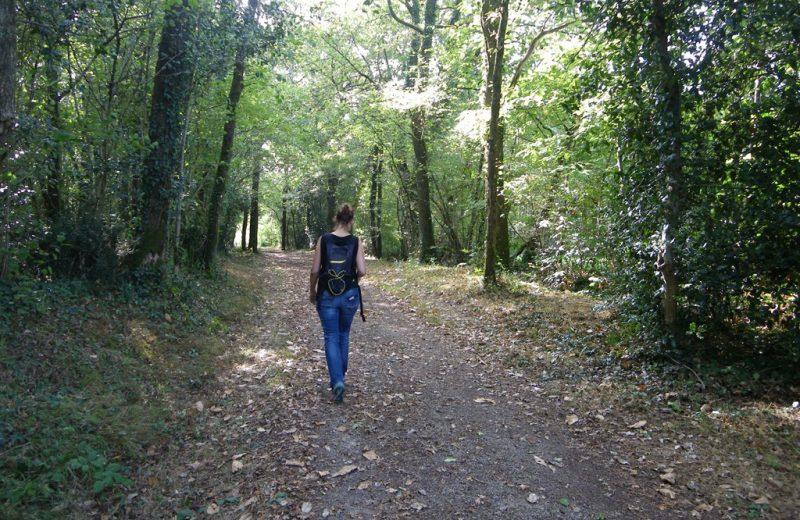 circuit-les-ombrages-le-landreau-levignoblenantes-tourisme (6)