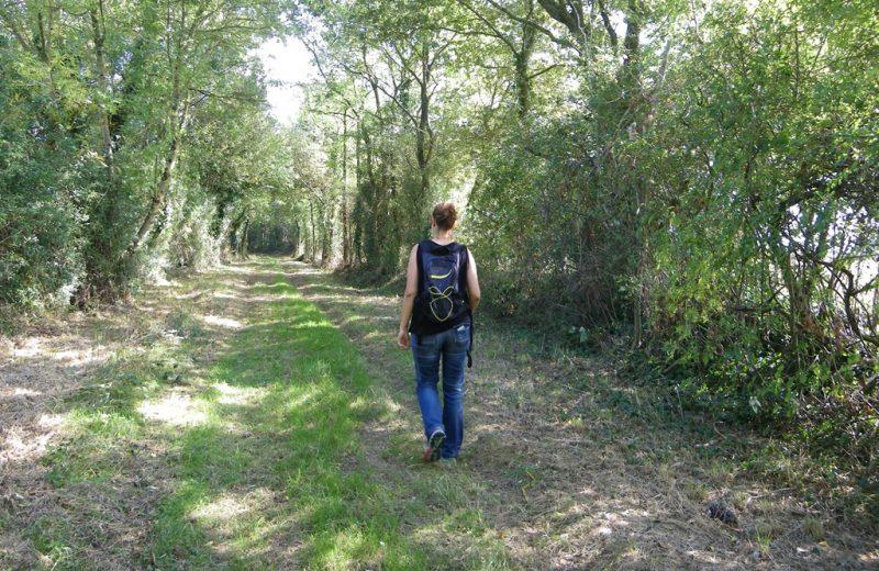 circuit-les-ombrages-le-landreau-levignoblenantes-tourisme (8)