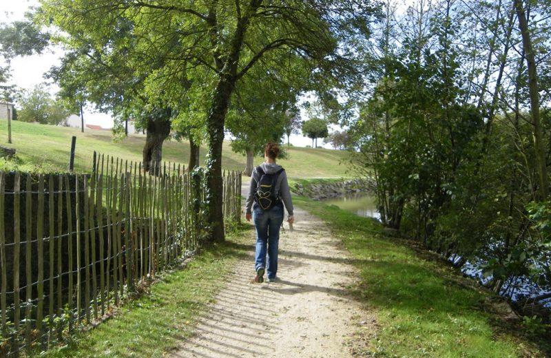 circuit-les-piliers-le-landreau-levignoblenantes-tourisme (5)