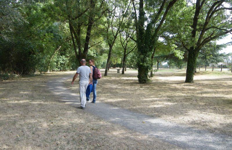 circuit-loire-stdeconcelles-levignoblenantes-tourisme (2)