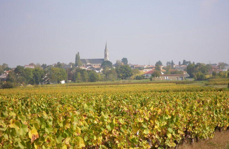 circuit-marais-lelandreau-levignoblenantes-tourisme (5)