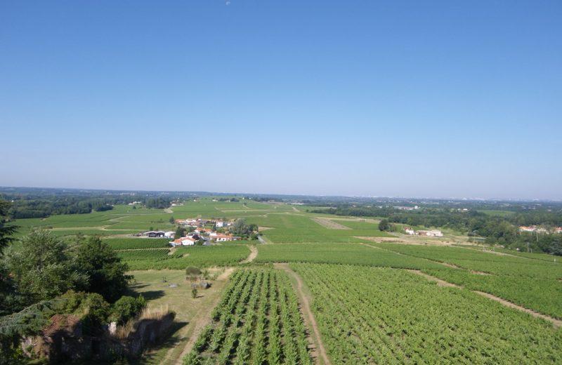 circuit-moulin-ouen-lelorouxbott-levignoblenantes-tourisme (4)