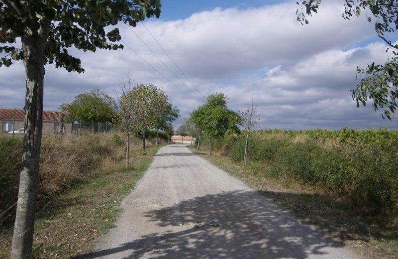 circuit-petitanjou-stjulien-levignoblenantes-tourisme (6)