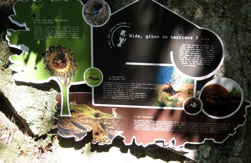 murmures-rochers-piste-empreintes-levignobledenantes-tourisme (19)