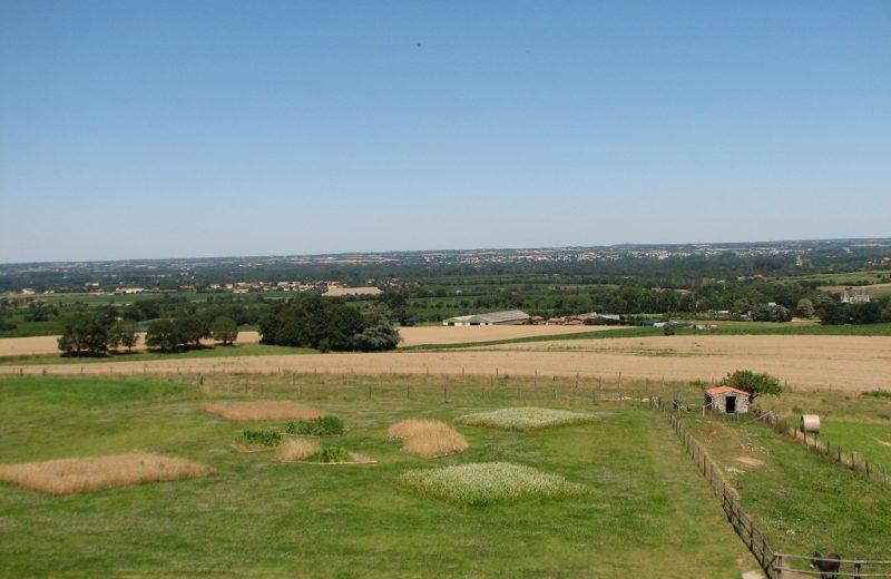 panorama-moulin-epinay